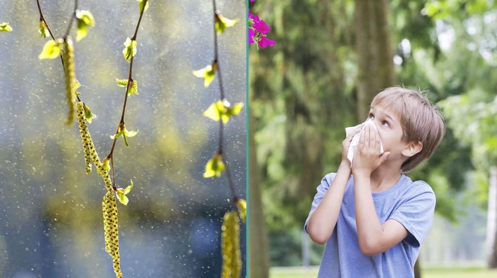"""<a href=""""https://www.aftonbladet.se/family/a/4q3G1q/barn-och-pollenallergi--det-har-behover-du-veta"""">Barn och pollenallergi – det här behöver du veta</a>"""