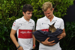 Charles Leclerc (MON) Alfa Romeo Sauber F1 Team and Marcus Ericsson (SWE) Alfa Romeo Sauber F1 Team with a Joey Kangaroo at Formula One World Championship, Rd1, Australian Grand Prix, Preparations, Melbourne, Australia, Thursday 22 March 2018.