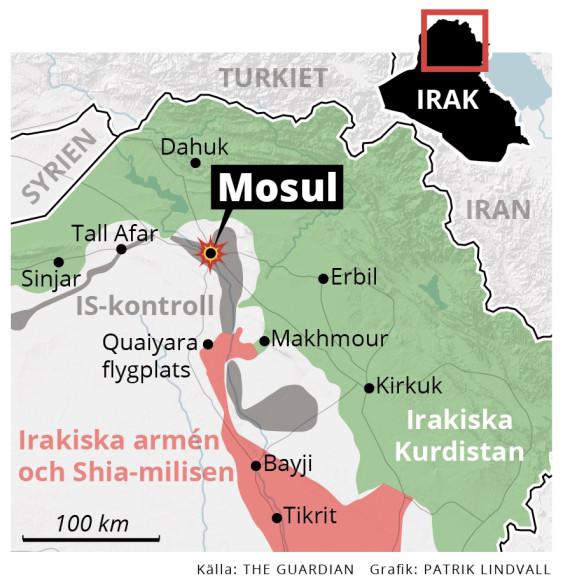 Mosul-Grupper