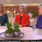 TV4 Nyhetsmorgon, kungen 40 år på tronen, mars 2013.
