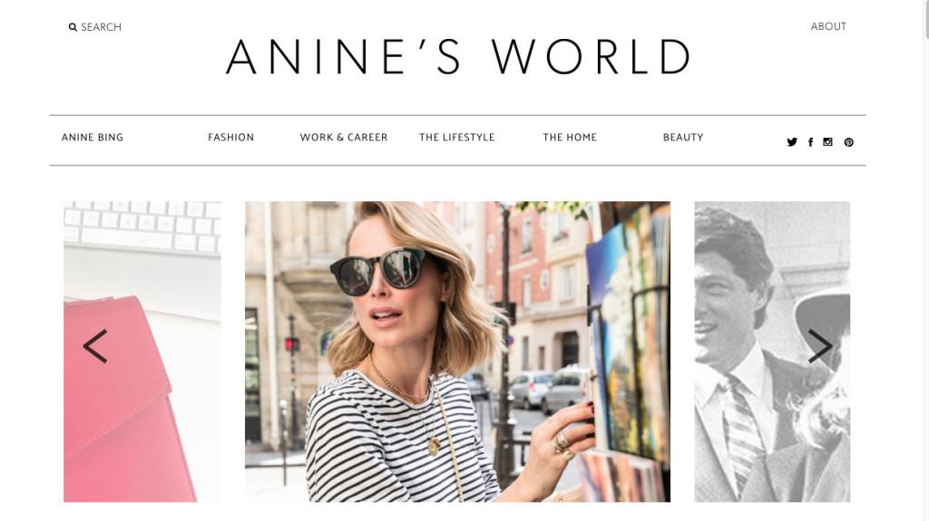 aninesblogg