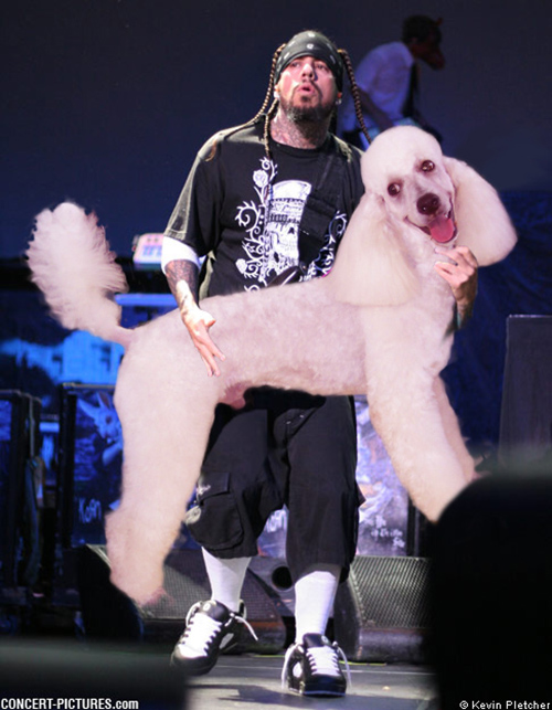 "Reginald ""Fieldy"" Arvizu, Korn."
