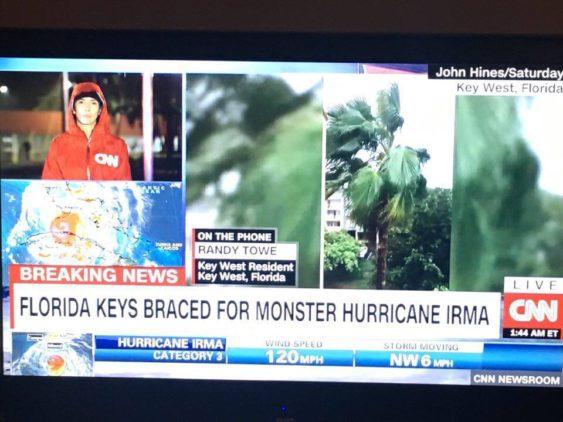 SEP:CNN2