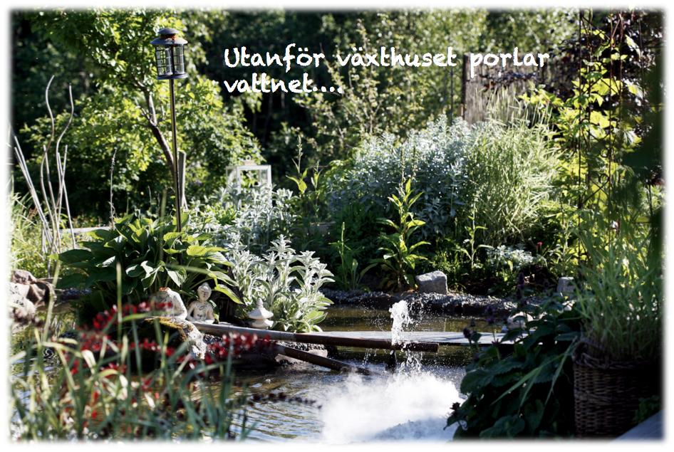 växthus, trädgård