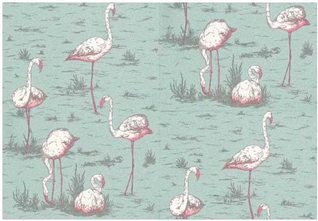 cole-and-son-flamingo-wallpaper
