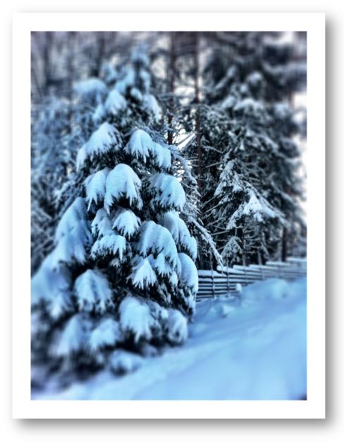 Skärmavbild 2013-12-22 kl. 14.47.22