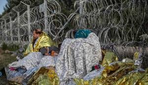 Flyktingar som kom försent till gränsen mellan Ungern och Serbien och nu inte kommer in i EU.