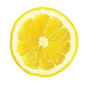 1003p48-lemon-slice-l