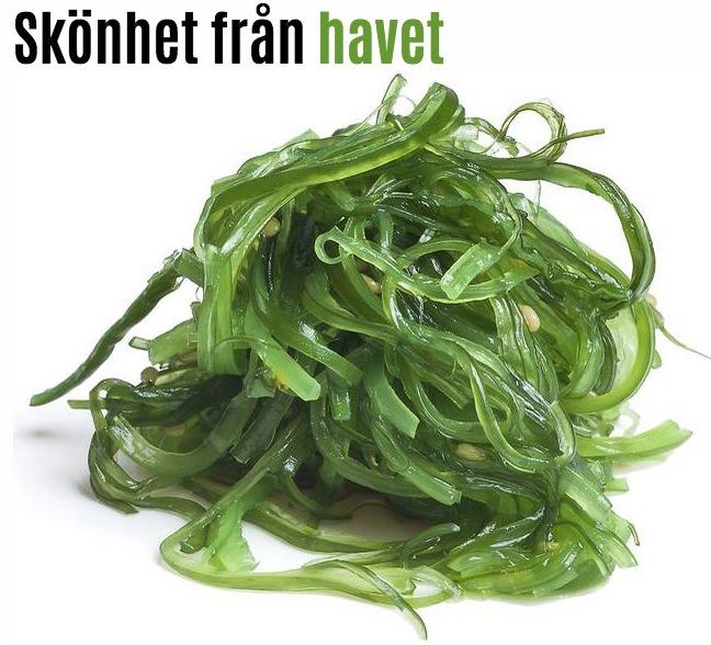 Tång, sjögräs och alger är det nya i hudvård och skönhet.