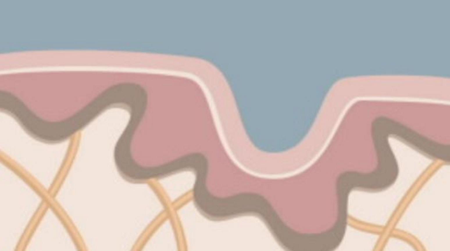 Stress, gener, UV-strålning, vad du äter påverkar huden och kapaciteten att bryta ner ämnen i vårt största organ. Huden