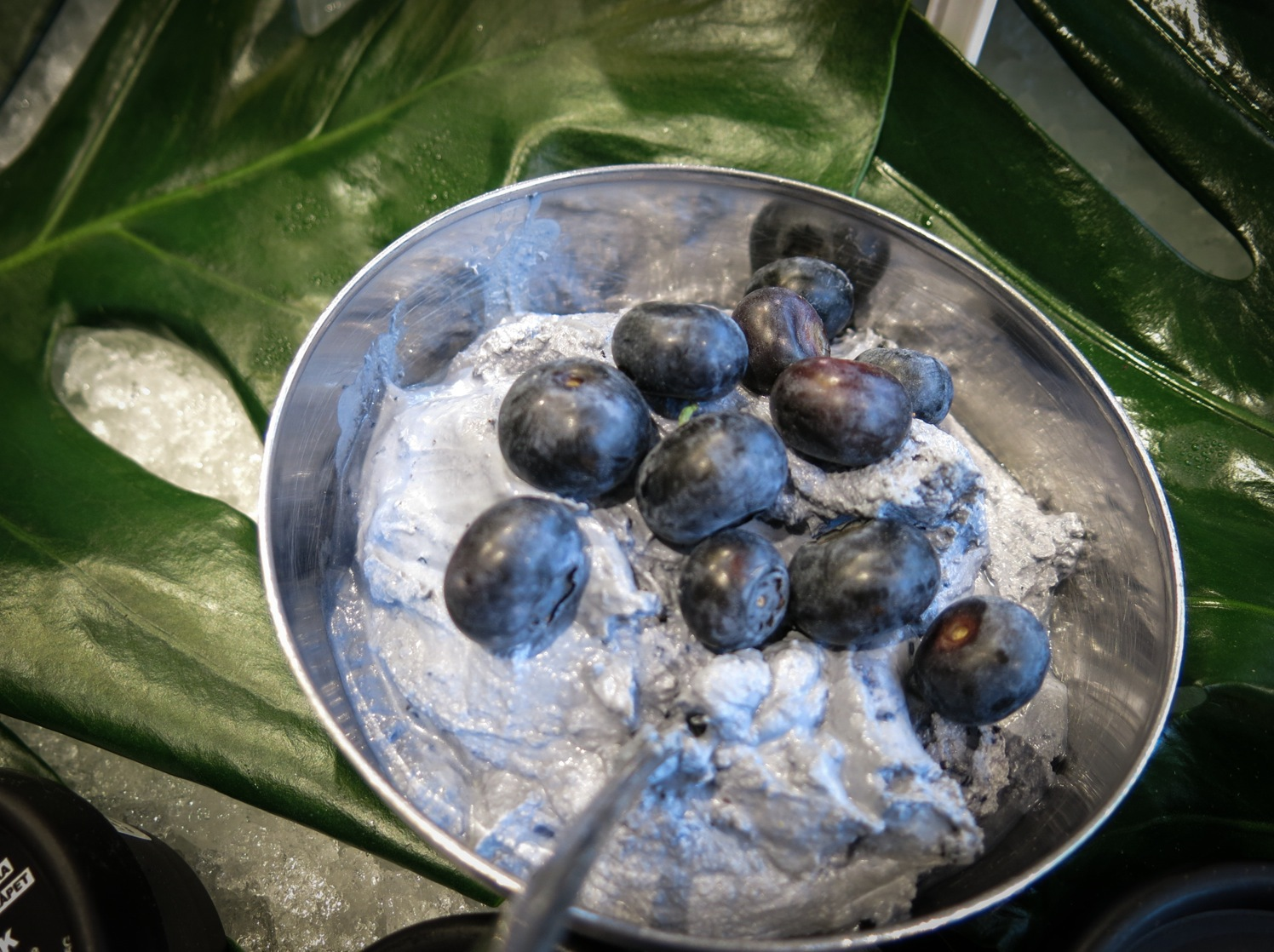 blåbär28