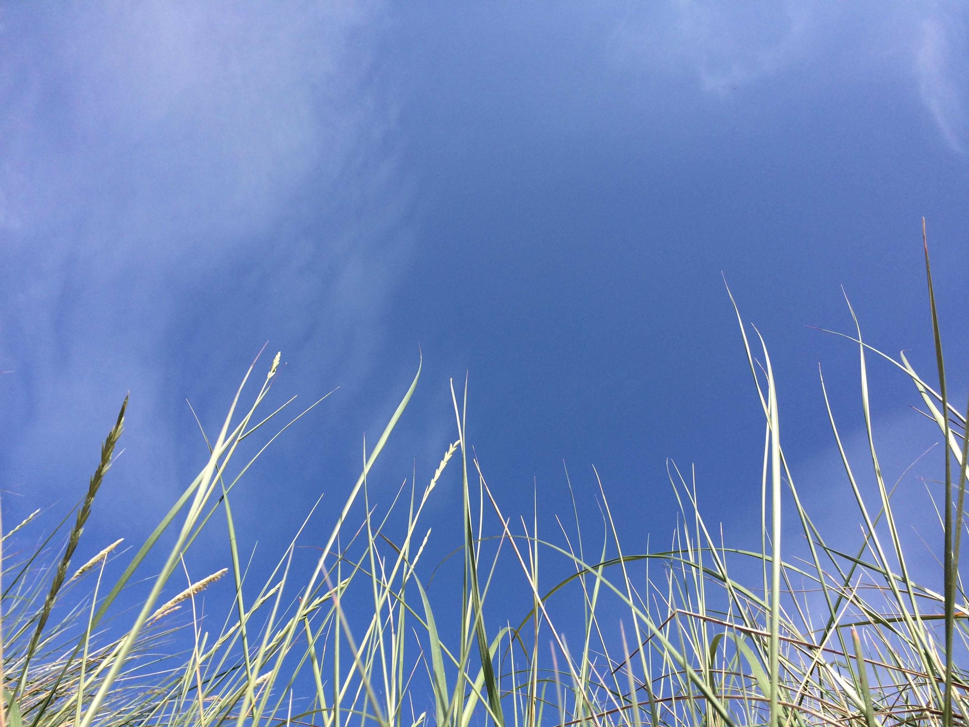 Ozonlagret fortsätter att tunnas ut, enligt ny forskning, vilket betyder att solskydd med hög spf är viktigare än någonsin. Foto: Skönhetsredaktörerna