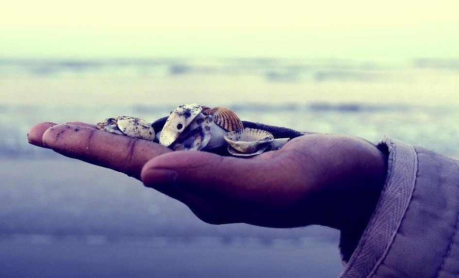I regeringens led att rensa upp Östersjön från mikroplaster är att ger bidrag till kustnära kommuner som vill städa upp sina stränder från plast som flyter i land. Bild: Pixabay