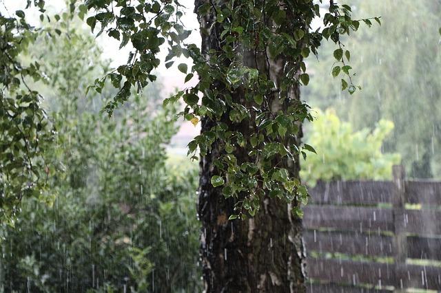 rain-541205_640