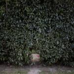Bakom ett hål i en häck i förorten Champs-sur-Marnes ligger en skogsdunge med ett romskt läger. Från utsidan syns inga spår av de cirka hundra människor som bor i tältliknande kojor i skogsdungen.