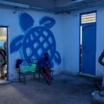 """""""Sköldpaddan är Liberi Nantes symbol eftersom den transporteras stora sträckor i vattnet och bygger bo där den flyter i land"""", förklarar Daniela Conti."""