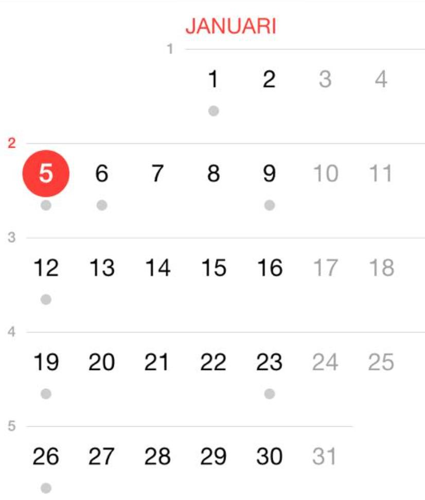 Skärmavbild 2015-01-05 kl. 13.39.54