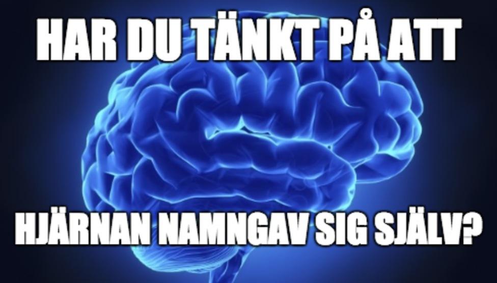 mind3