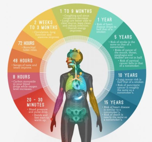 vad händer i kroppen