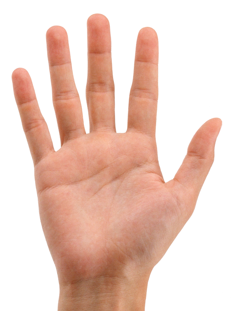 hands_png905