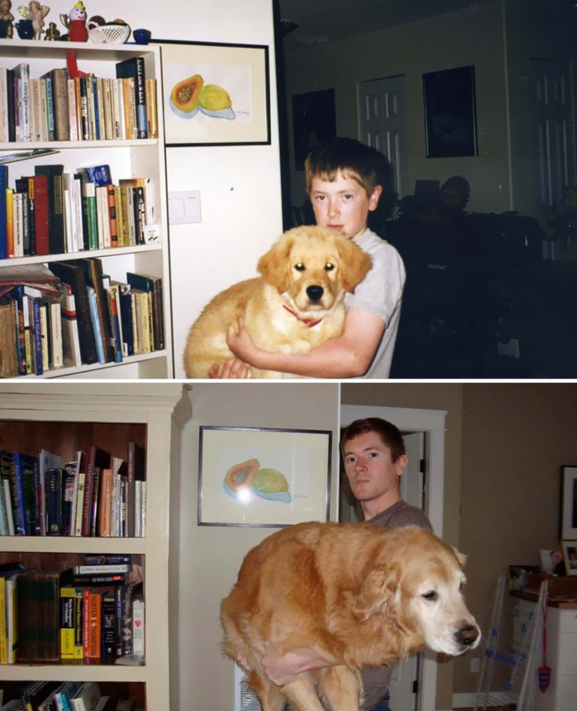 animals-before-after-then-now-31