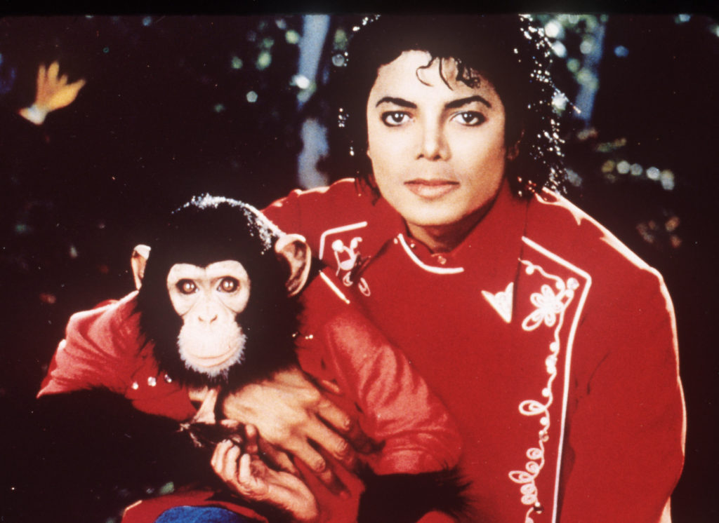automatarkiverad **file** michael jackson is seen in this undated file photo with his pet chimp bubbles and a bulldog. (ap photo/file) an undated file photo. jackson bubbles michael jackson bubbles