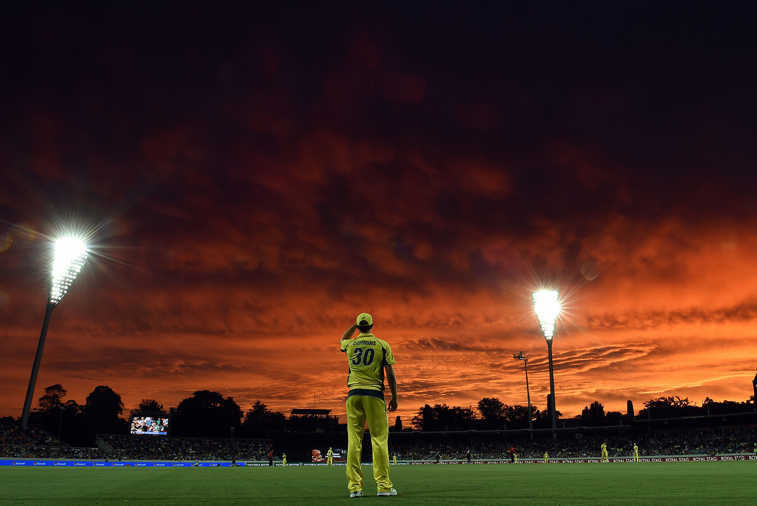 TOPSHOT - Australia's paceman Pat Cummins fields at the boundary line as the sun sets during the second game of the One Day International Cricket series between Australia and New Zealand in Canberra on December 6, 2016. / AFP PHOTO / Saeed KHAN / IMAGE RESTRICTED TO EDITORIAL USE - STRICTLY NO COMMERCIAL USE / TT / kod 444