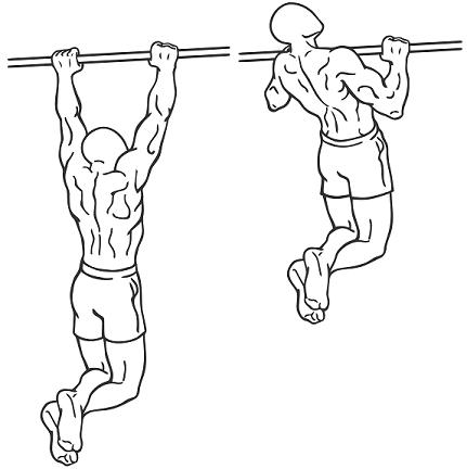 Sträck ut till raka armar och dra upp till hakan passerar stången. Något som må låta teoretiskt enkelt, men i praktiken lämnar starka spår. Bild lånad av: physics.stackexchange.com