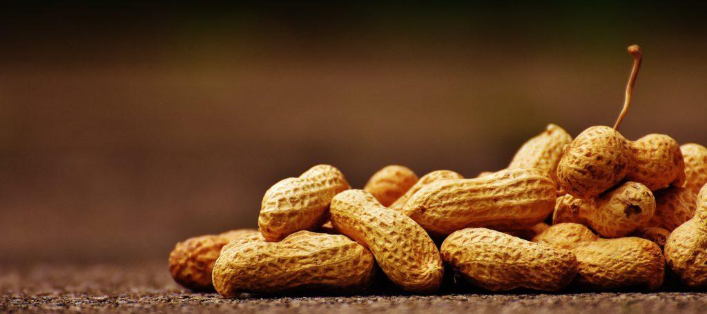 Nötter - ett supernyttigt mellanmål. Men gäller det verkligen alla?