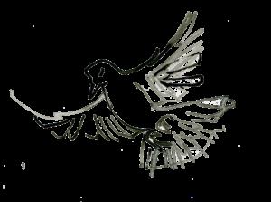 fågel-1033