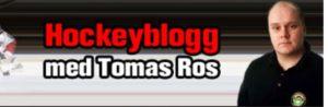Ros blogg från år 2009. Det första Blogghuvudet från 2005 var ännu fulare.